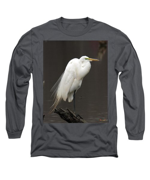 Great Egret Resting Dmsb0036 Long Sleeve T-Shirt