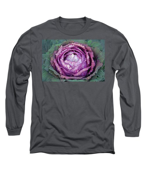 Heart Of Mystery Long Sleeve T-Shirt by Lynda Lehmann