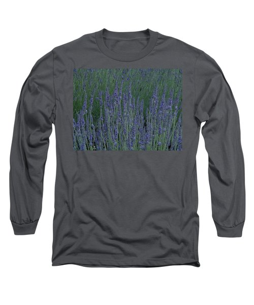 Just Lavender Long Sleeve T-Shirt by Manuela Constantin