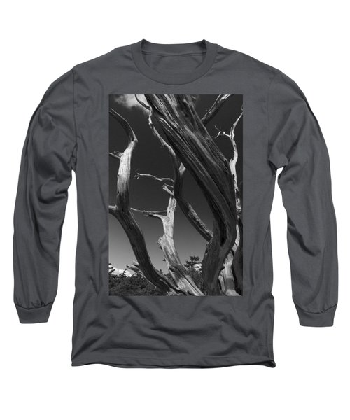 Long Sleeve T-Shirt featuring the photograph Lone Tree by David Gleeson