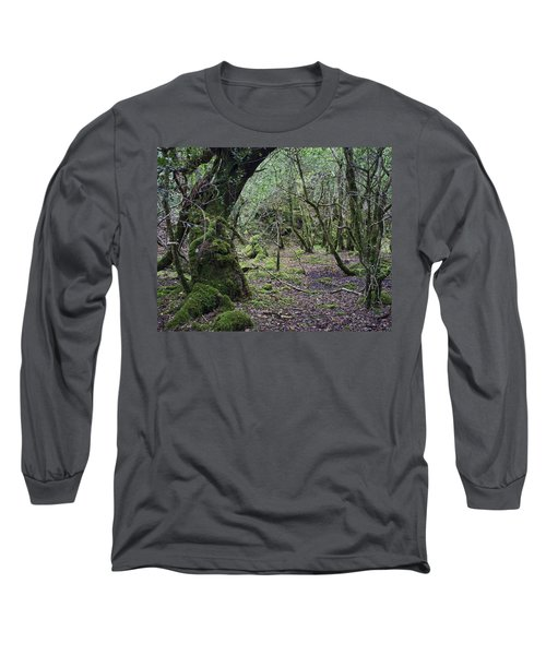 Long Sleeve T-Shirt featuring the photograph Magical Forest by Hugh Smith