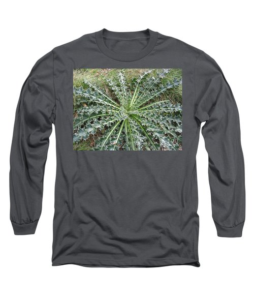 October Thistle Long Sleeve T-Shirt by Mark Robbins
