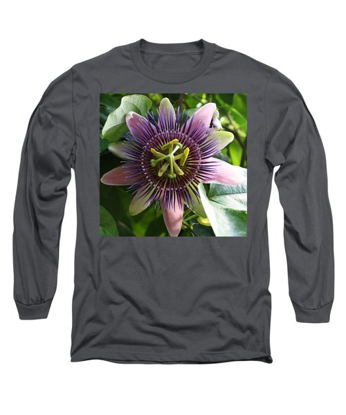 Passion Flower 2 Long Sleeve T-Shirt by Bruce Bley
