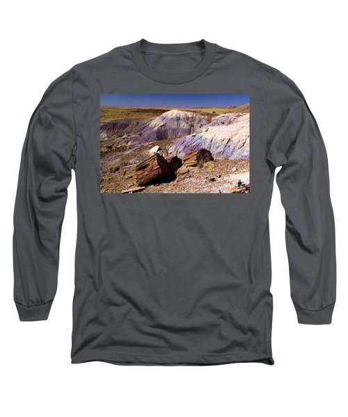 Petrified Logs In The Badlands Long Sleeve T-Shirt