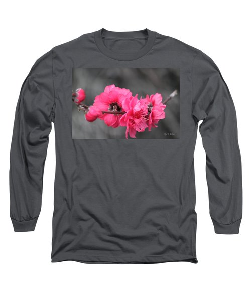 Long Sleeve T-Shirt featuring the photograph Pink Blossoms  by Amy Gallagher