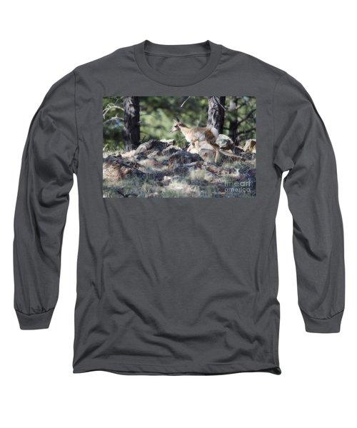 Pronghorn Antelope Fawn Long Sleeve T-Shirt