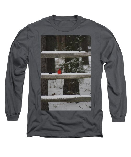 Red Bird Long Sleeve T-Shirt by Stacy C Bottoms