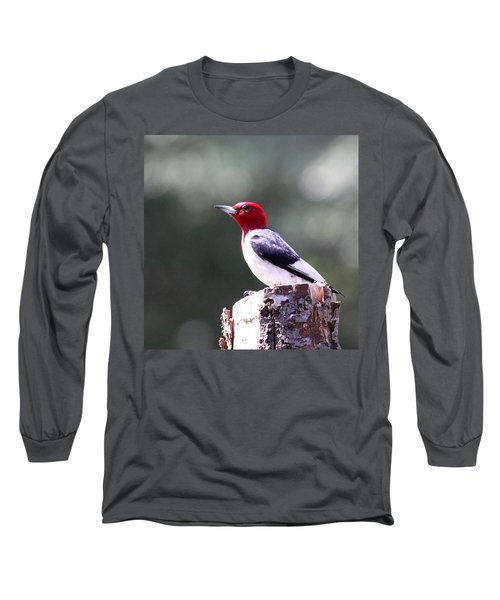 Red-headed Woodpecker - Statue Long Sleeve T-Shirt