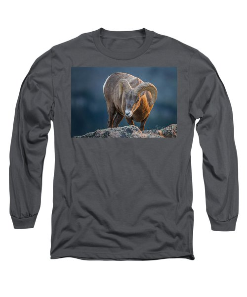 Rocky Mountain Big Horn Ram Long Sleeve T-Shirt by Ronald Lutz