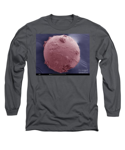 Sem Of Cretaceous-tertiary Kt Meteorite Long Sleeve T-Shirt
