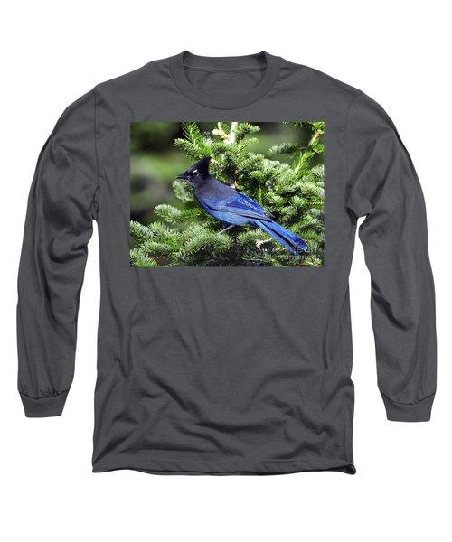 Stellers Jay Long Sleeve T-Shirt