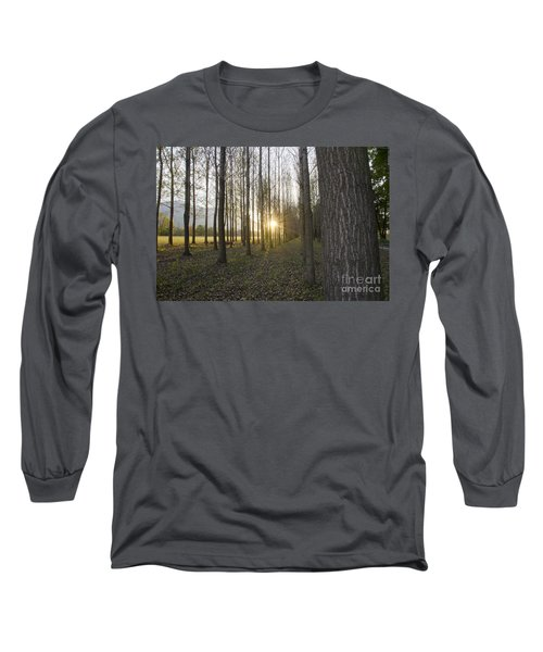 Sunlight In The Forest Long Sleeve T-Shirt