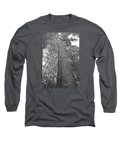 Long Sleeve T-Shirt featuring the photograph Tall Tree With Sunshine by Susan Leggett