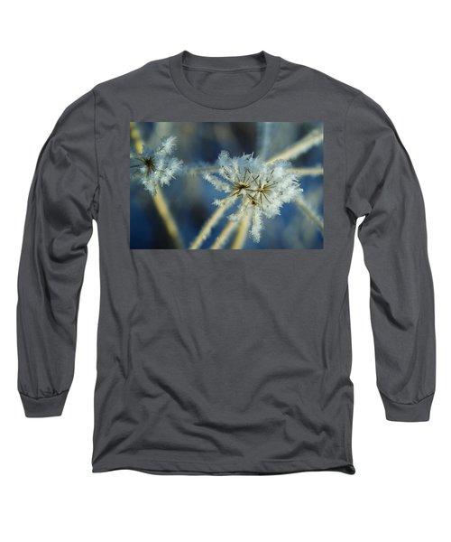 The Beauty Of Winter Long Sleeve T-Shirt by Ellen Heaverlo