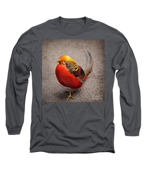 The Golden Pheasant Long Sleeve T-Shirt