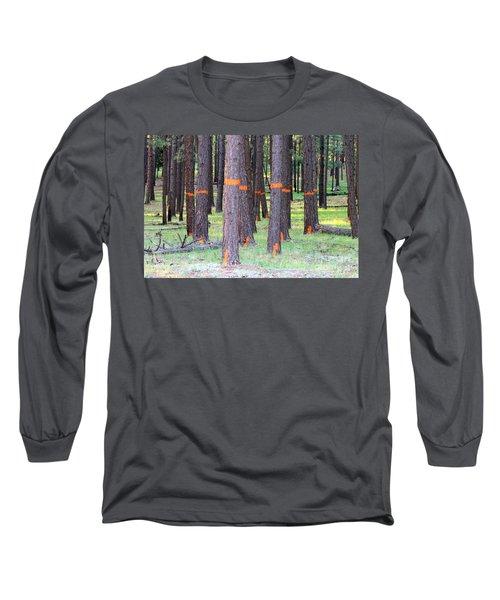 Timber Marking Long Sleeve T-Shirt by Pamela Walrath