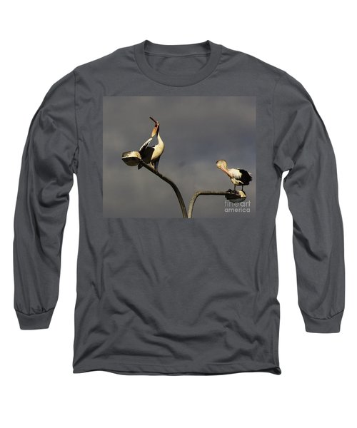 Long Sleeve T-Shirt featuring the photograph Two On A Pole by Blair Stuart