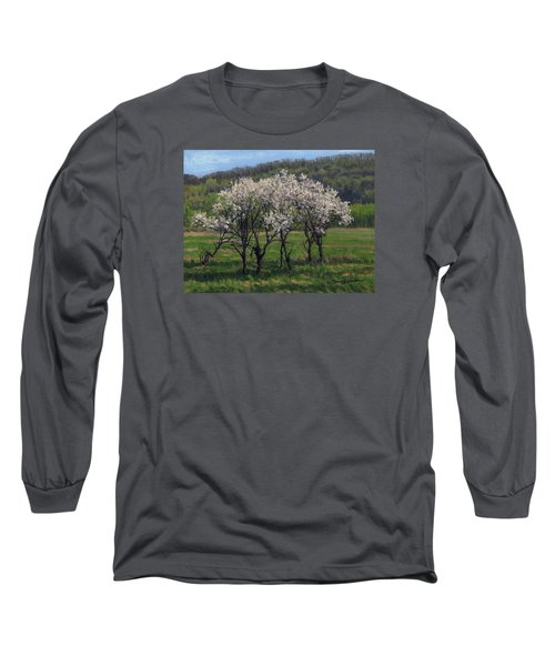 Valley Plum Thicket Long Sleeve T-Shirt by Bruce Morrison