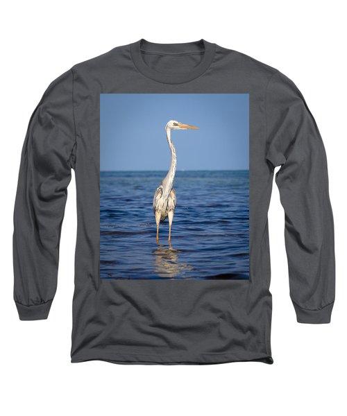 Wurdemann's Heron Long Sleeve T-Shirt
