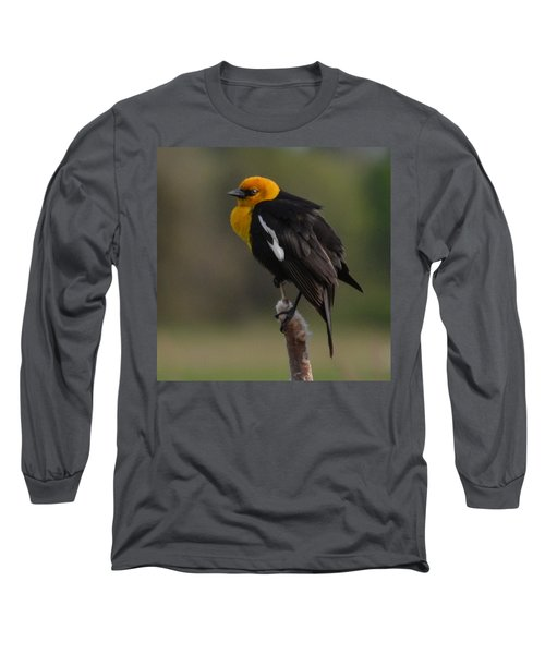 Yellow-headed Blackbird Long Sleeve T-Shirt