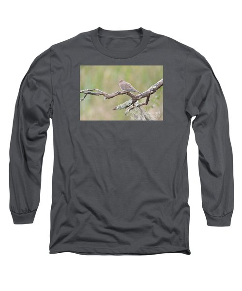 Early Mourning Dove Long Sleeve T-Shirt by Kathy Gibbons