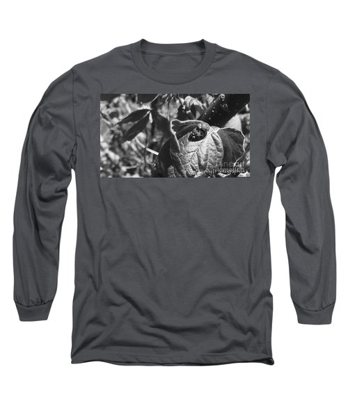Love-bugs - No. 2016 Long Sleeve T-Shirt