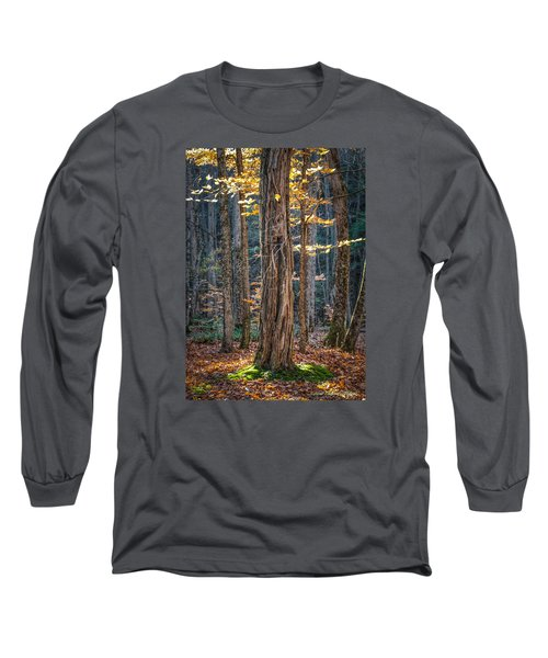 #0187 - Dummerston, Vermont Long Sleeve T-Shirt
