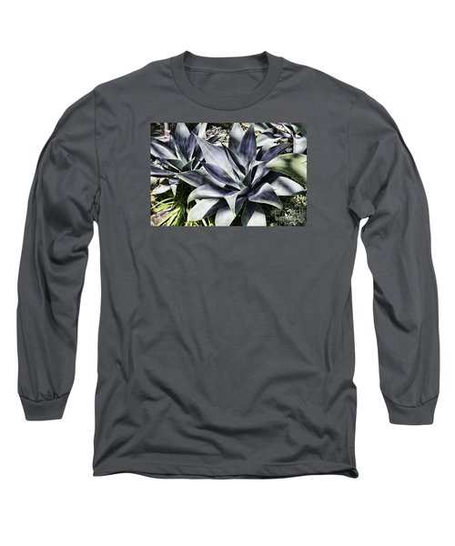 Aloe Long Sleeve T-Shirt by Judy Wolinsky