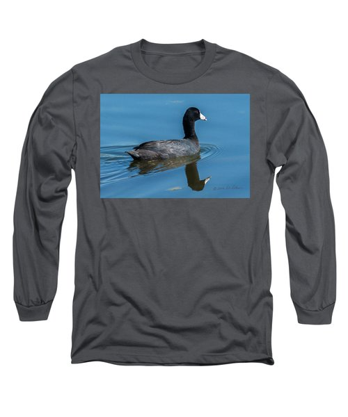American Coot Swiming Long Sleeve T-Shirt by Edward Peterson