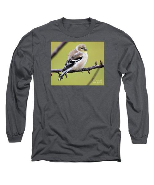 American Goldfinch Long Sleeve T-Shirt by Ricky L Jones