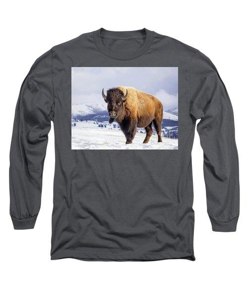 American Legend Long Sleeve T-Shirt by Jack Bell