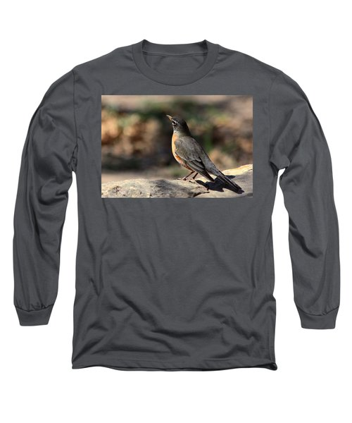 American Robin On Rock Long Sleeve T-Shirt by Sheila Brown