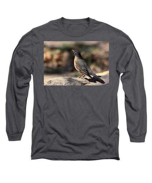 American Robin On Rock Long Sleeve T-Shirt