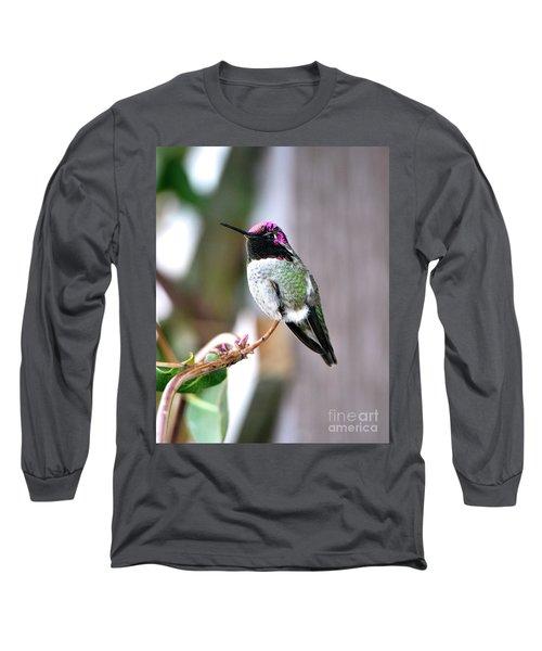 Anna's Hummingbird Long Sleeve T-Shirt