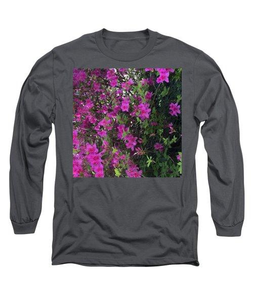 Azaleas Long Sleeve T-Shirt by Kay Gilley