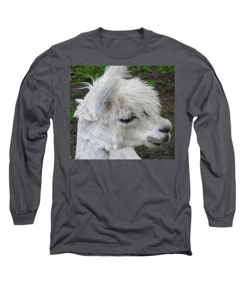 Baby Llama Long Sleeve T-Shirt by Ellen Henneke