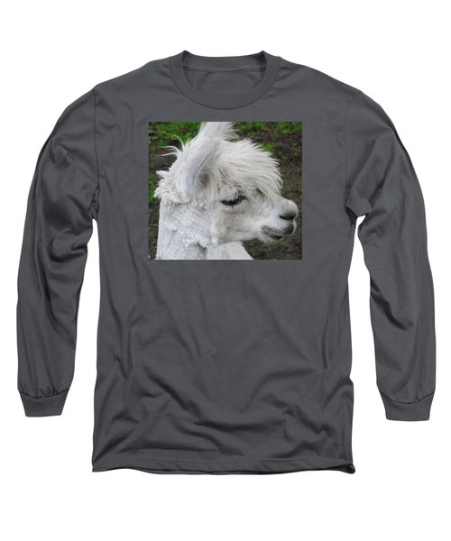 Baby Llama Long Sleeve T-Shirt by Ellen Henneke