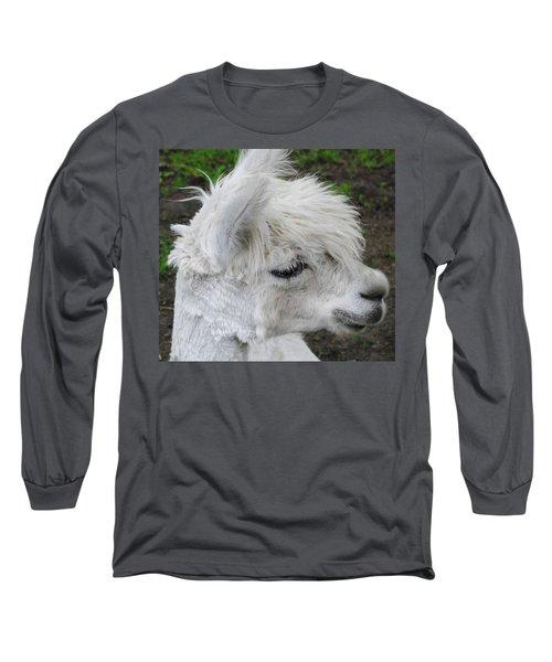 Baby Llama Long Sleeve T-Shirt
