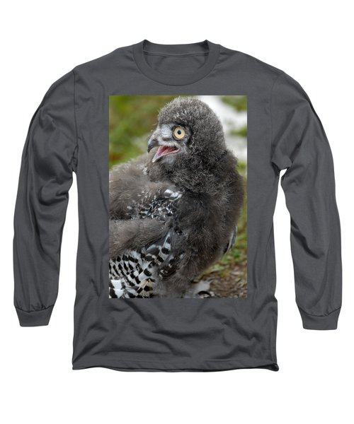 Long Sleeve T-Shirt featuring the photograph Baby Snowy Owl by JT Lewis