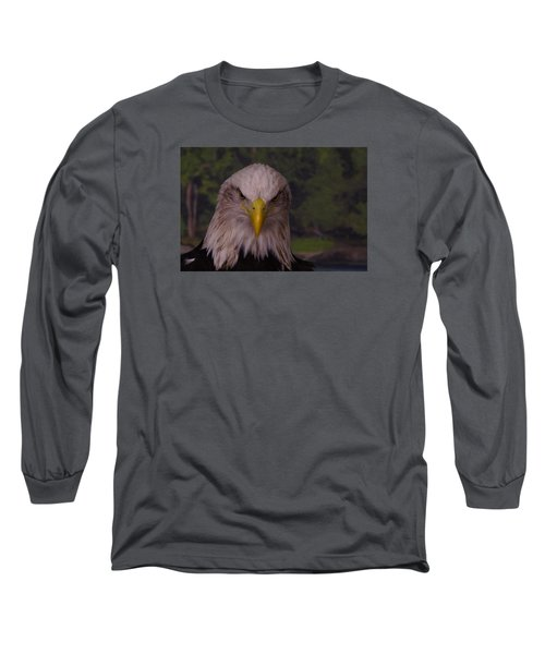 Bald Eagle Long Sleeve T-Shirt by Steven Clipperton