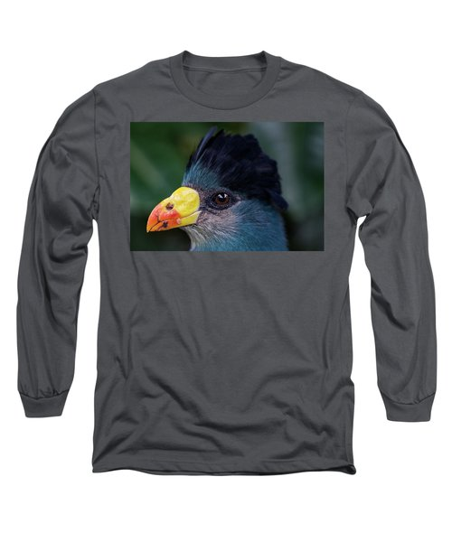 Bird Face Long Sleeve T-Shirt by Jay Stockhaus