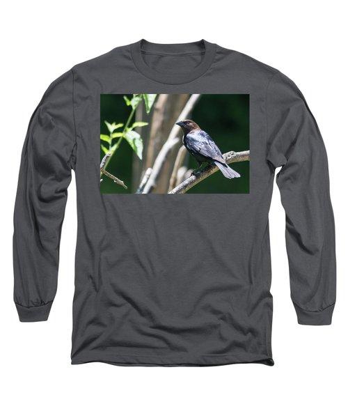 Brown-headed Cowbird Long Sleeve T-Shirt