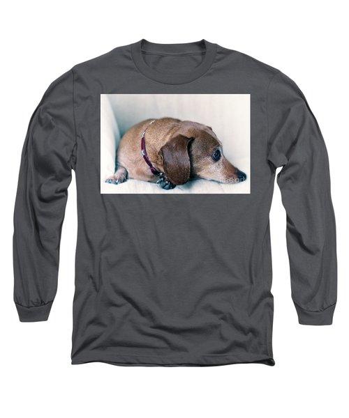Brownie The Dachshund Long Sleeve T-Shirt