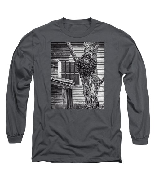Burl And Window Long Sleeve T-Shirt