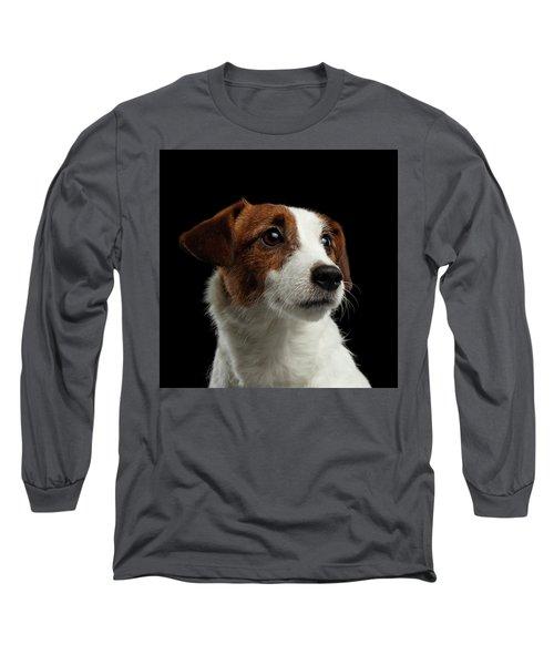 Closeup Portrait Of Jack Russell Terrier Dog On Black Long Sleeve T-Shirt by Sergey Taran