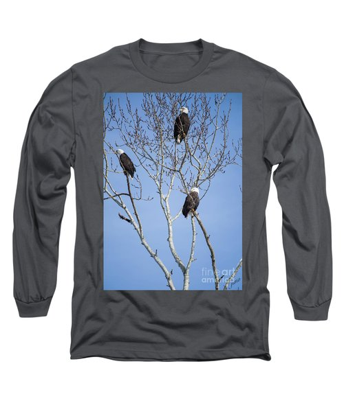 Long Sleeve T-Shirt featuring the photograph Eagles by Jim  Hatch