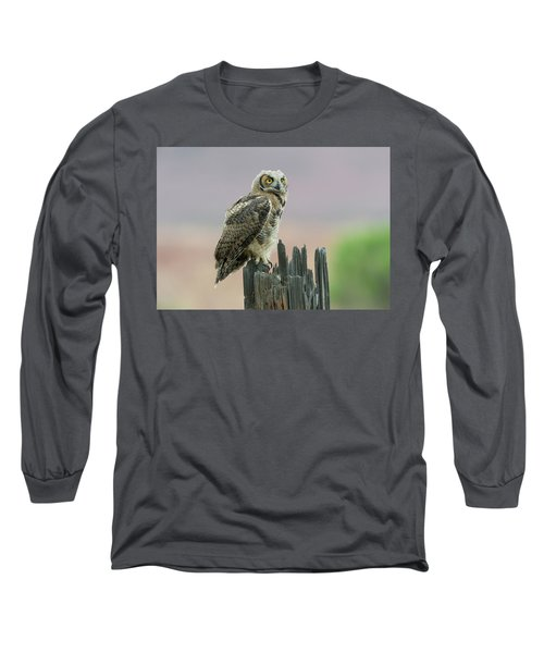 Ethereal Long Sleeve T-Shirt by Scott Warner