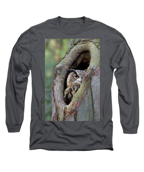 Eurasian Eagle-owl Bubo Bubo Looking Long Sleeve T-Shirt