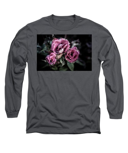 Fading Beauty Long Sleeve T-Shirt