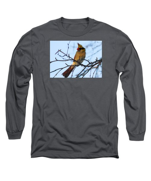 Long Sleeve T-Shirt featuring the photograph Female Northern Cardinal by Ricky L Jones
